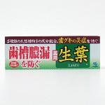 ◆【ハミガキ・歯磨き】生葉(しょうよう)(100g)<医薬部外品>